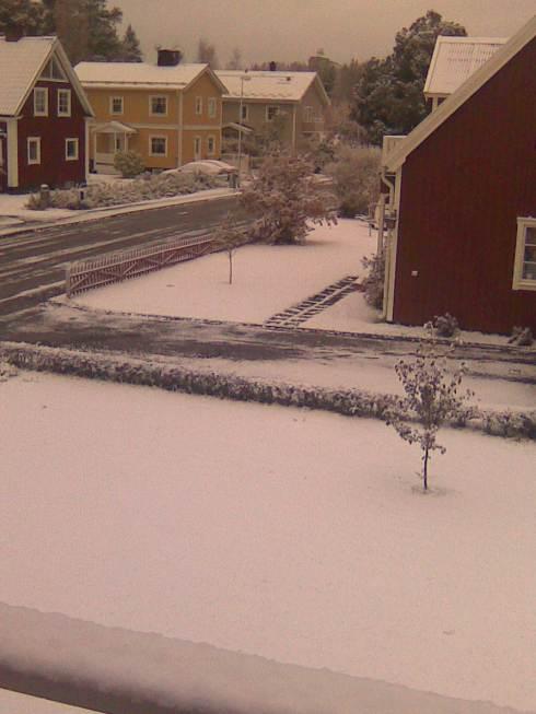 snowcurse